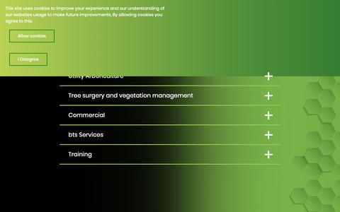 Screenshot of Services Page btsgroupuk.com - Services - captured Dec. 18, 2018