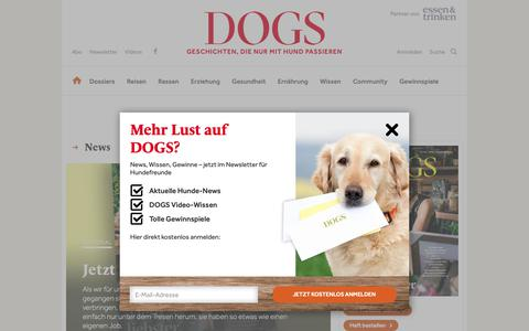 Screenshot of Home Page dogs-magazin.de - DOGS – Europas größtes Hundemagazin - captured Oct. 19, 2018
