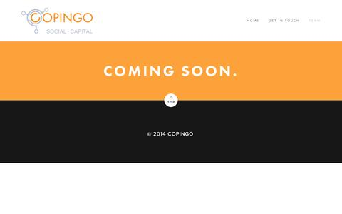 Screenshot of Team Page squarespace.com - Team — copingo - captured Sept. 11, 2014
