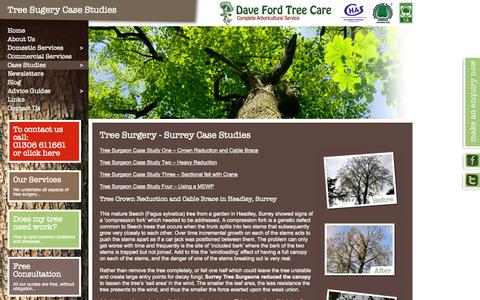 Screenshot of Case Studies Page davefordtreecare.co.uk - Case Studies: Tree Surgery Services In Horsham, Reigate, Dorking - captured Oct. 5, 2014