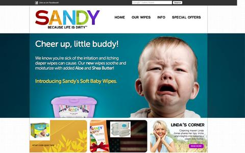 Screenshot of Home Page Terms Page sandywipes.com - Sandy Wipes. Because life is dirty. - captured March 13, 2016