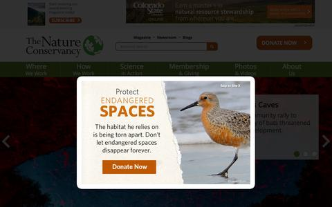 Screenshot of Home Page nature.org - Nature Conservancy | Protecting Nature, Preserving Life - captured Oct. 18, 2015