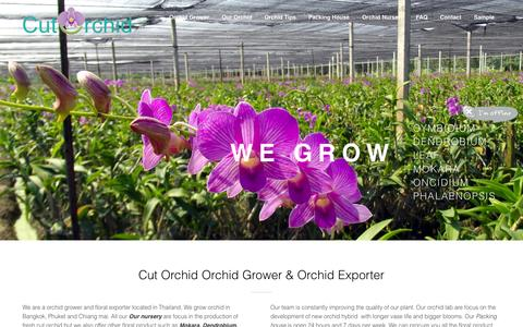 Screenshot of Home Page cutorchid.com - Orchid Grower & Orchid Exporters from Thailand|Cut Orchid Exporter - captured Jan. 27, 2015
