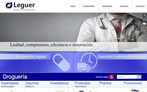 Screenshot of Home Page leguer.cl - empresa | Leguer S.A. - captured July 31, 2017