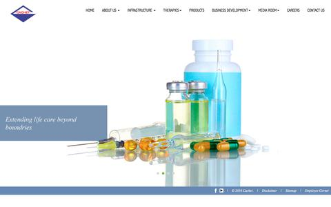 Screenshot of Home Page cachetindia.com - Cachet Pharmaceuticals Private Limited - captured Sept. 25, 2018
