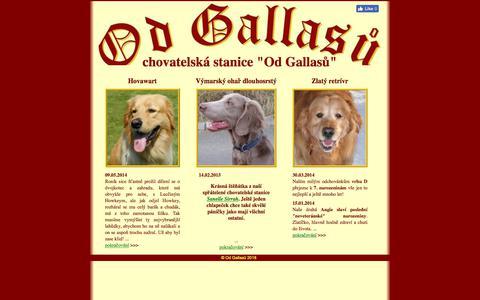 Screenshot of Home Page od-gallasu.cz - Chovatelská stanice Od Gallasů - zlatý retrívr, hovawart, výmarský ohař - captured June 28, 2018