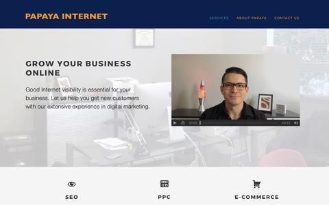 Papaya Internet   SEO & PPC Consultancy in Atlanta, Georgia