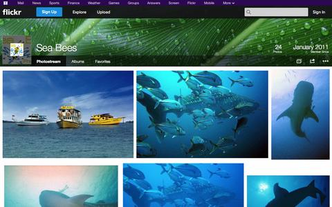 Screenshot of Flickr Page flickr.com - Flickr: Sea Bees' Photostream - captured Oct. 27, 2014