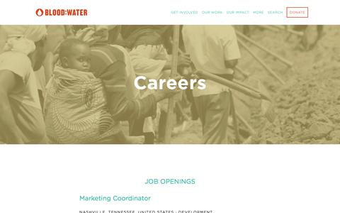 Screenshot of Jobs Page bloodwater.org - Careers — Blood:Water - captured Oct. 10, 2017