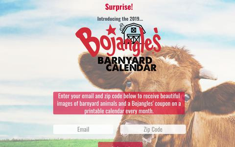 Screenshot of Privacy Page bojangles.com - Bojangles' Famous Chicken 'n Biscuits | Privacy Policy - captured July 24, 2018