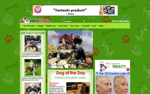 Screenshot of Home Page catchfred.com - Dogs | catchFred - captured Sept. 18, 2014