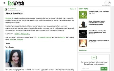 Screenshot of About Page ecowatch.com - About EcoWatch - Built on RebelMouse - captured July 16, 2018
