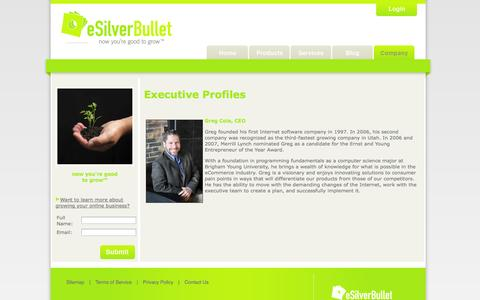 Screenshot of Team Page esilverbullet.com - Management: eSilverBullet Executive Team Profiles - captured Oct. 10, 2014