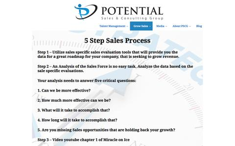 Potential Sales Group | 5 Step Sales Process