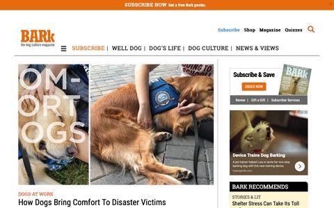 Screenshot of Home Page thebark.com - The Bark magazine | The Coolest Dog Magazine Ever! - captured Oct. 5, 2018