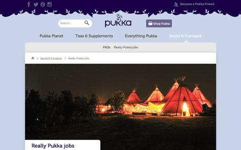 Screenshot of Jobs Page pukkaherbs.com - Really Pukka jobs | Social & Contacts | Pukka Herbs - captured Dec. 13, 2015