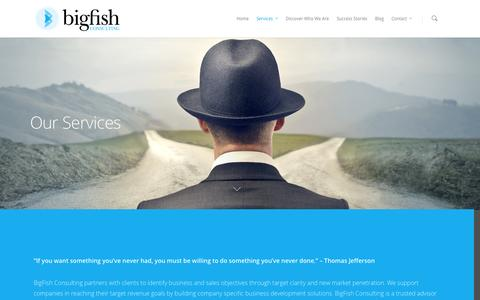 Screenshot of Services Page bigfishconsult.com - Services Offered by BigFish Consulting, LLC. - captured Oct. 5, 2014