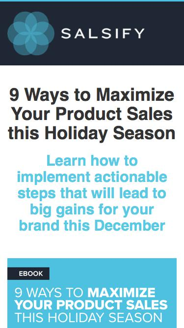 eBook -  9 Ways to Maximize Your Product Sales This Holiday