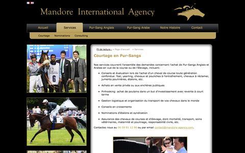 Screenshot of Services Page mandore-agency.com - Courtage - Mandore Agency - Nicolas DE WATRIGANT - captured Oct. 1, 2014