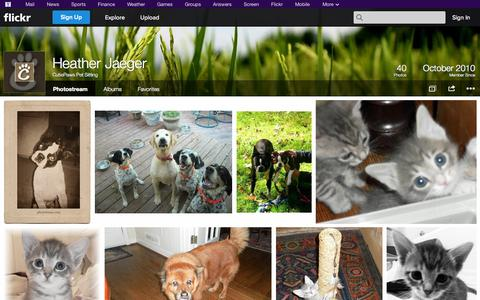 Screenshot of Flickr Page flickr.com - Flickr: CutiePaws Pet Sitting's Photostream - captured Oct. 22, 2014