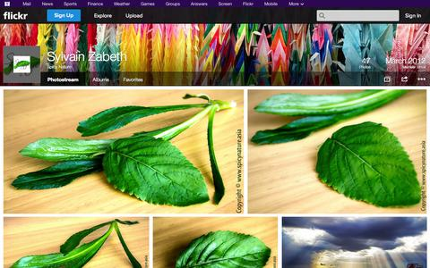 Screenshot of Flickr Page flickr.com - Flickr: Spicy Nature's Photostream - captured Oct. 26, 2014