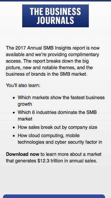 2017 SMB Insights Annual Report