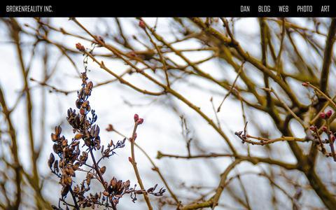 Screenshot of Home Page brokenreality.com - Brokenreality Inc. - Dan Hendrickson - captured Feb. 8, 2016