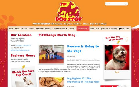 Screenshot of Blog thedogstop.net - The Dog Stop®   - captured Oct. 16, 2017