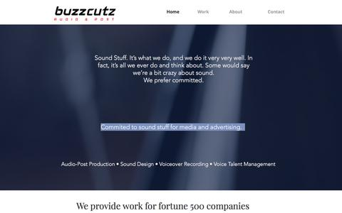 Screenshot of Home Page buzzcutzaudio.com - buzzcutzaudio - captured June 3, 2017