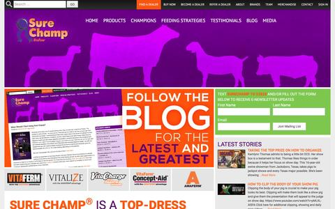 Screenshot of Home Page surechamp.com - Sure Champ | Sure Champ is a natural supplement that helps livestock utilize feed more efficiently and stimulate appetite. - captured June 27, 2016