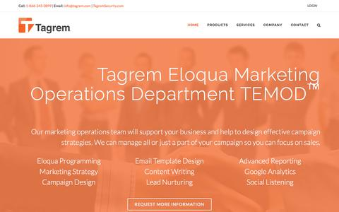 Screenshot of Services Page tagrem.com - Tagrem Technology Services & Consulting - captured Feb. 13, 2016