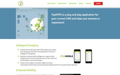 Screenshot of Products Page topopps.com - How We Do It   TopOpps - captured Sept. 17, 2014