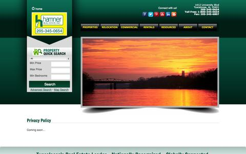 Screenshot of Privacy Page hamnerrealestate.com - Privacy Policy - Hamner - captured Nov. 1, 2014