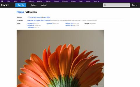 Screenshot of Flickr Page flickr.com - All sizes | Gerberas | Flickr - Photo Sharing! - captured Oct. 26, 2014