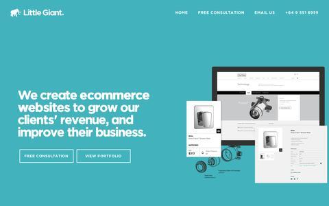 Little Giant - Ecommerce website design Auckland | Ecommerce optimisation