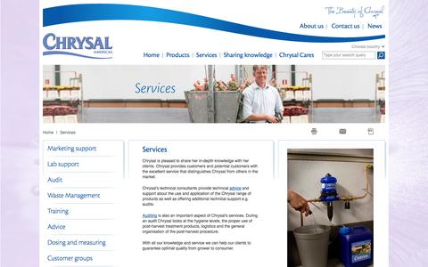 Screenshot of Services Page chrysalusa.com - Services - captured Oct. 2, 2014