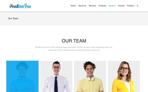 Screenshot of Support Page pixelgenies.com - Our Team – Pixelgenies - captured July 19, 2018