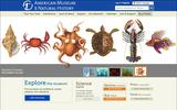 Old Screenshot American Museum of Natural History Home Page