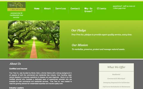 Screenshot of About Page truetreeinc.com - About - captured Aug. 17, 2015