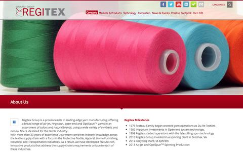 Screenshot of About Page regitex.com - About Us » Regitex - captured Oct. 7, 2014