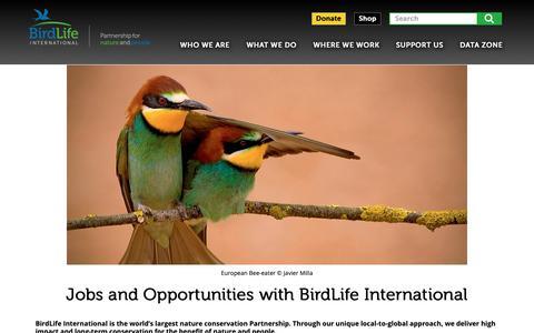 Screenshot of Jobs Page birdlife.org - Jobs and Opportunities with BirdLife International | BirdLife - captured Nov. 12, 2018