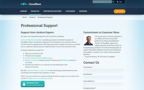 Screenshot of Support Page cloudbees.com - Professional Support | CloudBees - captured Oct. 28, 2014