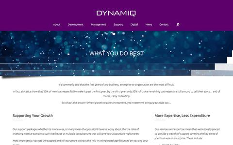 Screenshot of Support Page dynamiqmanagement.co.uk - Support - DYNAMIQ - captured Jan. 7, 2016