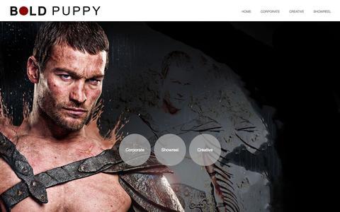 Screenshot of Contact Page boldpuppy.com - My great Wordpress blog - captured Oct. 8, 2014