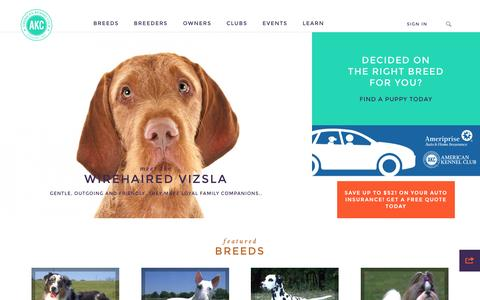 Screenshot of Home Page akc.org - American Kennel Club - The Dog's Champion - American Kennel Club - captured Oct. 1, 2015