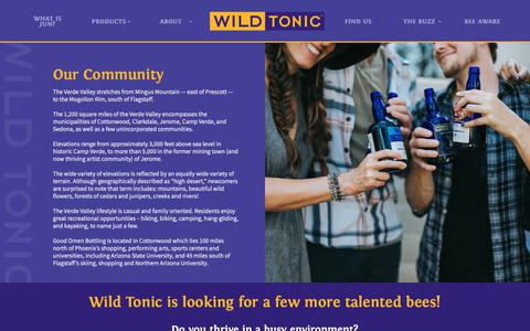 Screenshot of Jobs Page wildtonic.com - Careers ~ Wild Tonic Jun Kombucha - captured Oct. 20, 2018