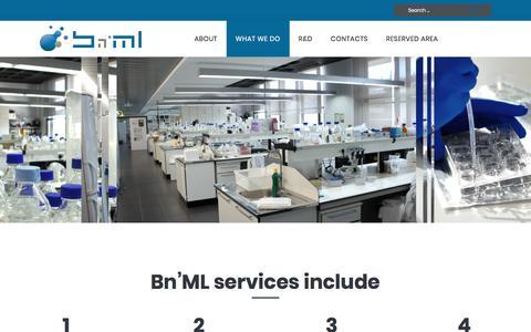 Screenshot of Services Page bnml.eu - Services – Bn'ML - captured Oct. 10, 2017