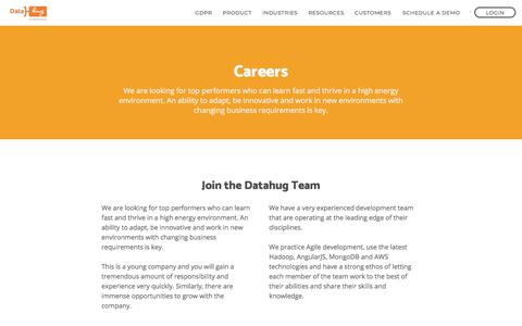 Screenshot of Jobs Page datahug.com - Datahug | Careers, Internships and Leadership Positions - captured June 1, 2018