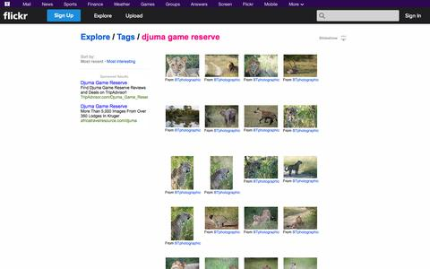 """Screenshot of Flickr Page flickr.com - Flickr: """"djuma game reserve"""" - captured Oct. 23, 2014"""