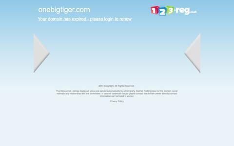 Screenshot of Services Page onebigtiger.com captured Oct. 26, 2014